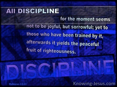 Hebrews 12:11 Discipline May Not Be Joyful (blue)